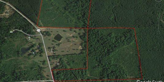 83 Acres Many Louisiana
