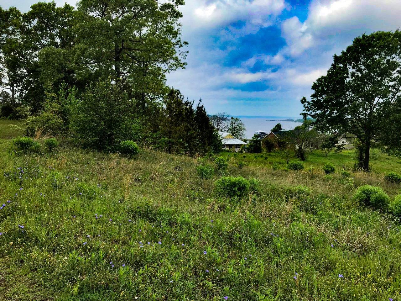 Lot 21 of Toledo Bend Lakeside Estates (Water View)